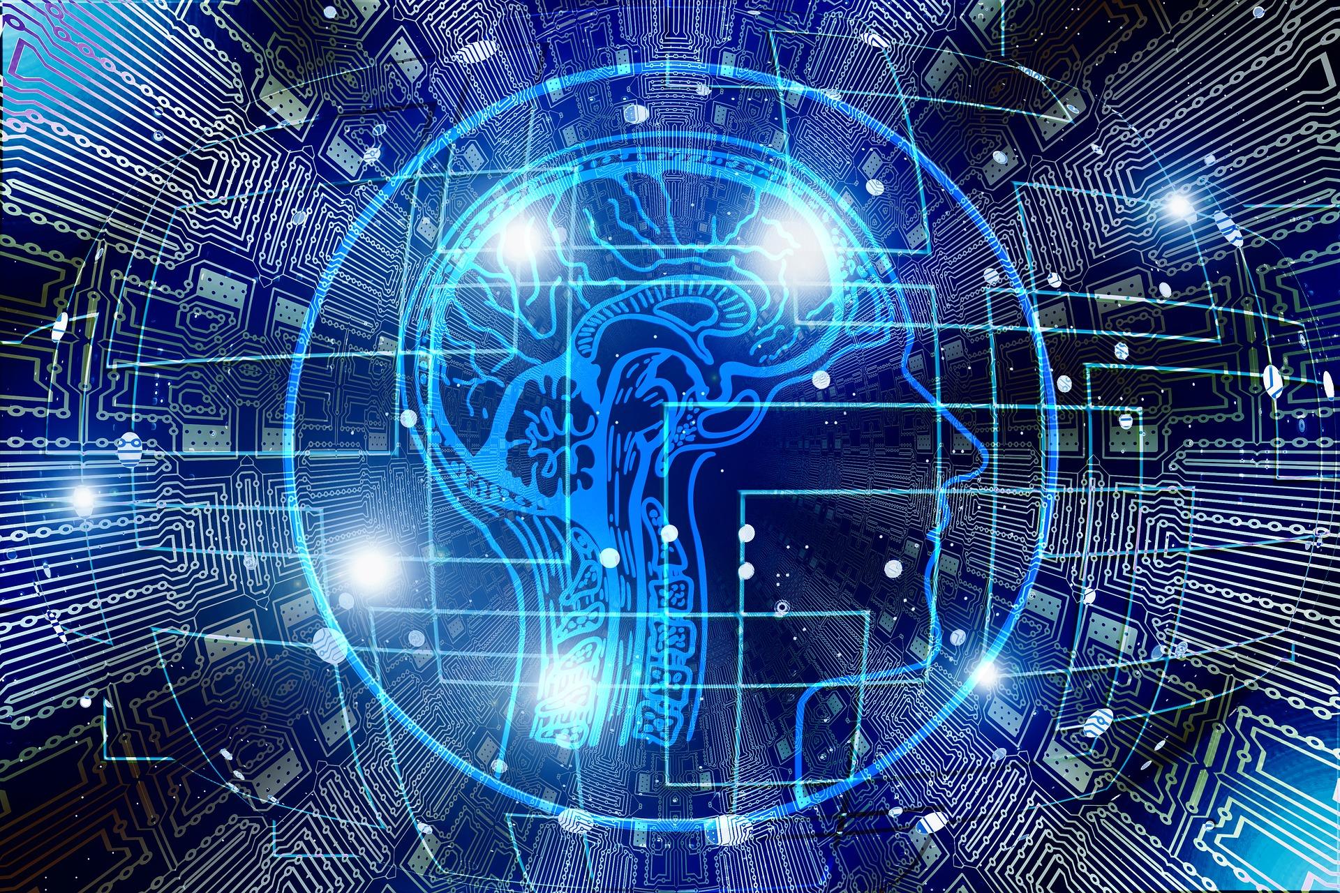 Model-intel.ligències-múltiples