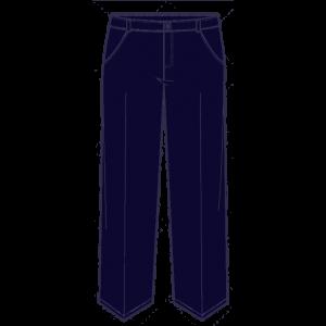 pantalonsvestir